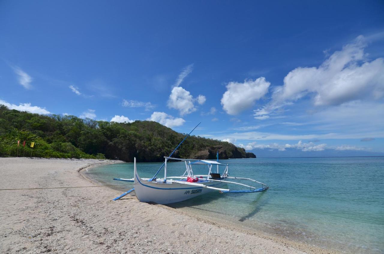 Image result for anilao beach