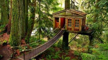 Treehouse Masters - Home Tree Home