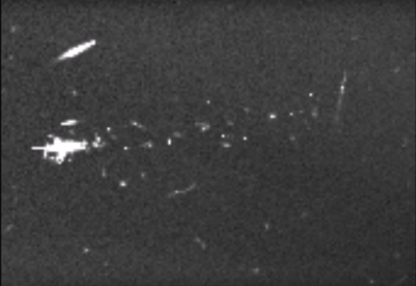 A UFO Hunter Spotted a Fleet of Spaceships Flying Through ...