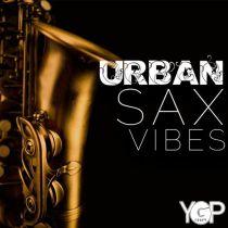 Big Citi Loops Urban Sax Vibes WAV