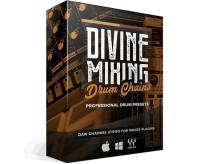 Sean Divine - Divine Mixing Drum Chains