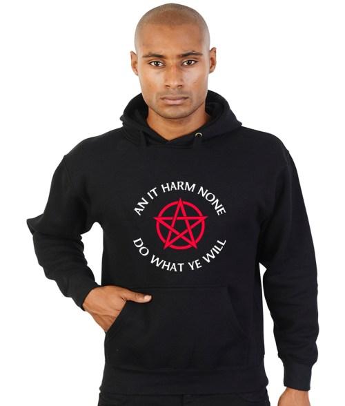 an it harm none pagan hoodie
