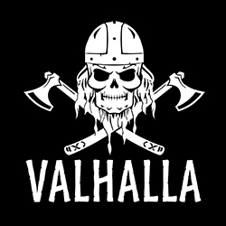 valhalla viking skull pagan design