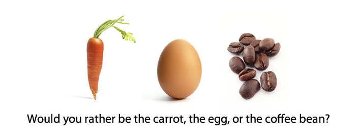 carrot egg coffee bean |Rabbi Shai