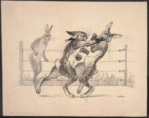 Read more about the article Rabbit Boxing!
