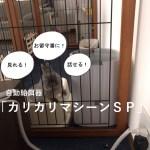 犬,猫,うさぎ,ペットのお留守番に!見守りカメラ付きカリカリマシーンSP
