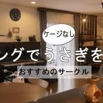 【リビングでうさぎを飼っている我が家の様子】動画でアップしました