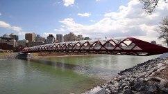 calgary-icons-peace-bridge-wide