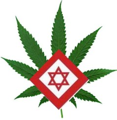 Magen David Adom With Medical Marajuana