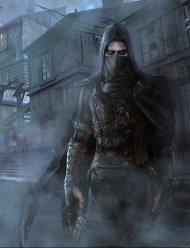 thief_cover_pitch_by_i_guyjin_i-d7ktix9