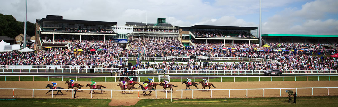 Image result for newcastle races