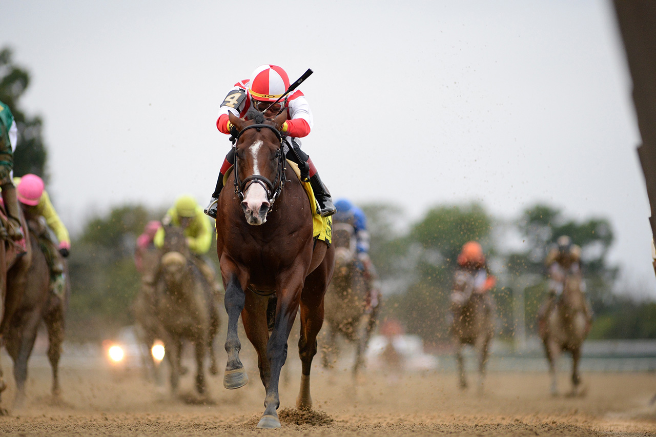 Complexity 2020 Kentucky Derby Amp Oaks May 1st And 2nd