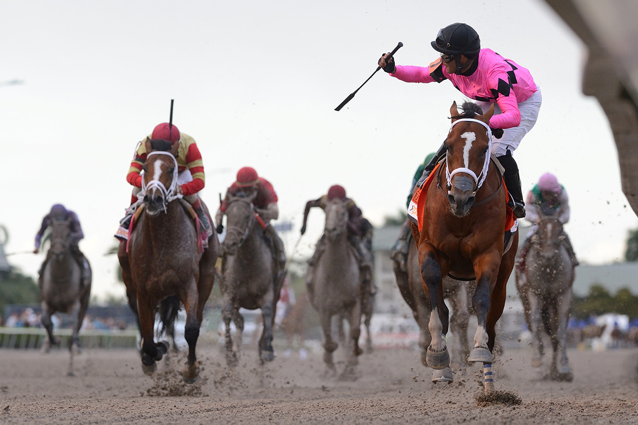 Maximum Security 2020 Kentucky Derby Amp Oaks May 1st