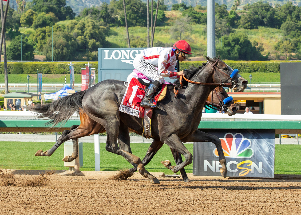 Roadster 2020 Kentucky Derby Amp Oaks May 1st And 2nd 2020
