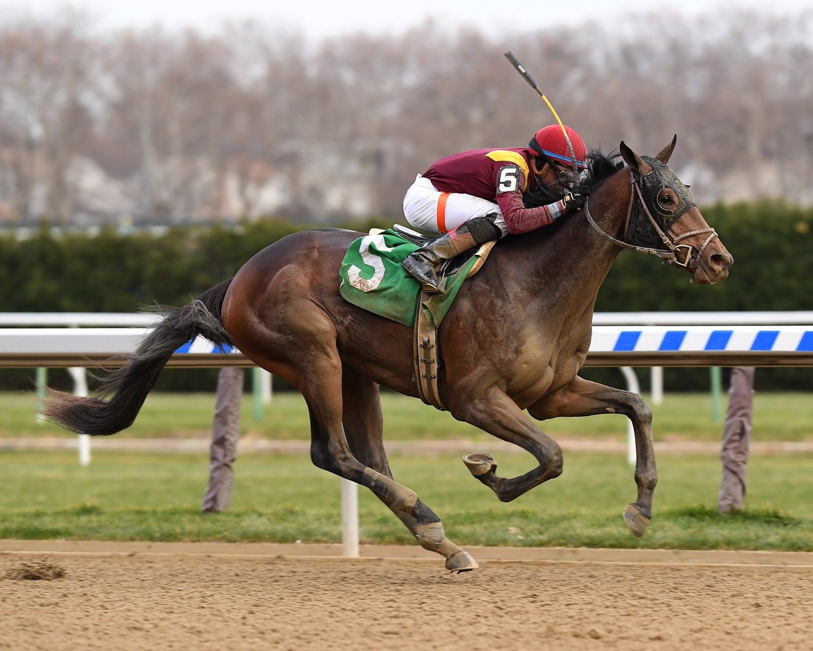Catholic Boy 2020 Kentucky Derby Amp Oaks May 1st And
