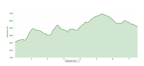 Reach the Beach Leg #25 Elevation Profile