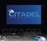 Web design, UX UI, Photography, Digital Image manipulation, Citadel, Security, Anita B. Carroll, Race-Point.com