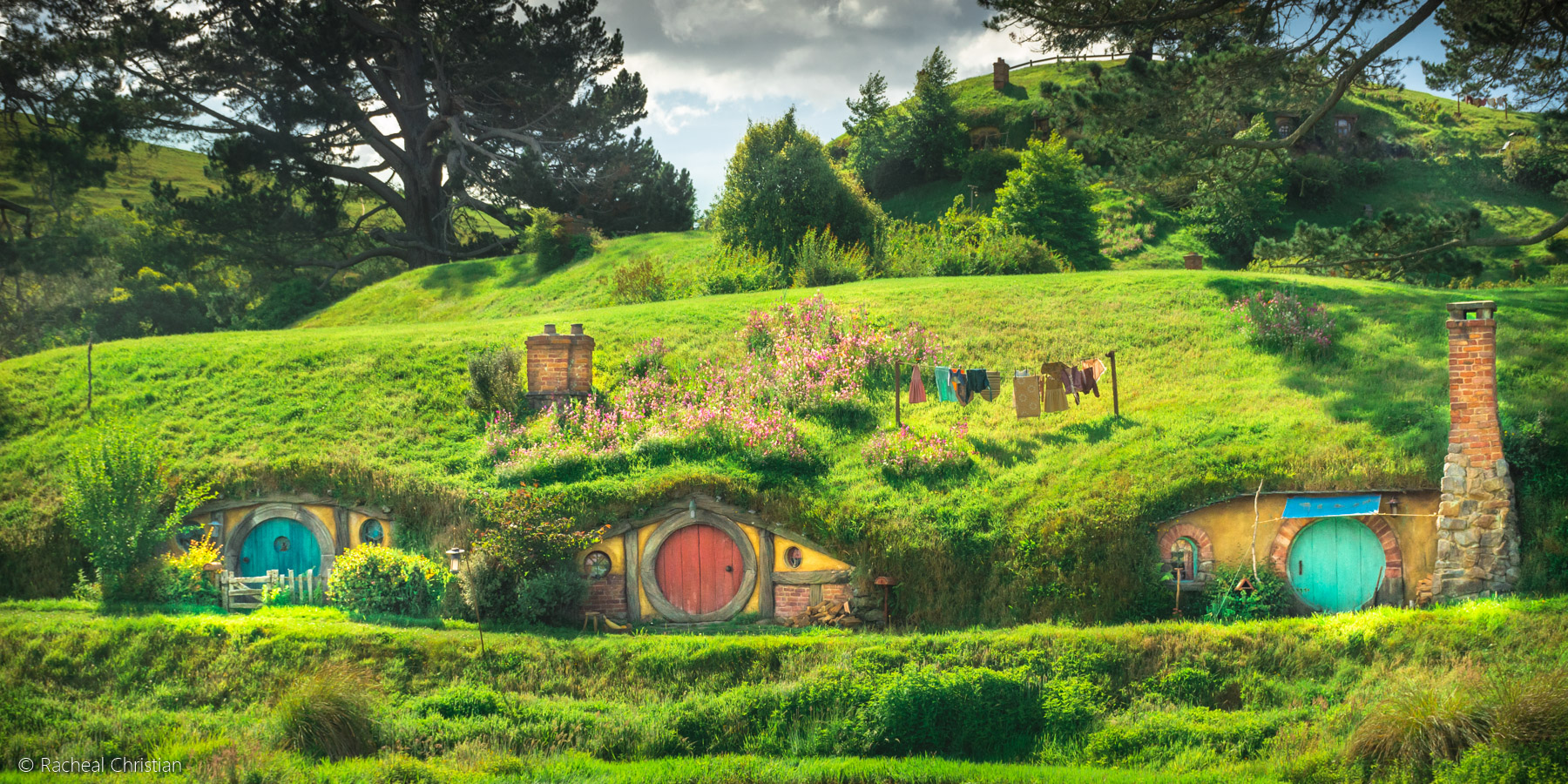 Hobbit Lane - Hobbiton by Racheal Christian -
