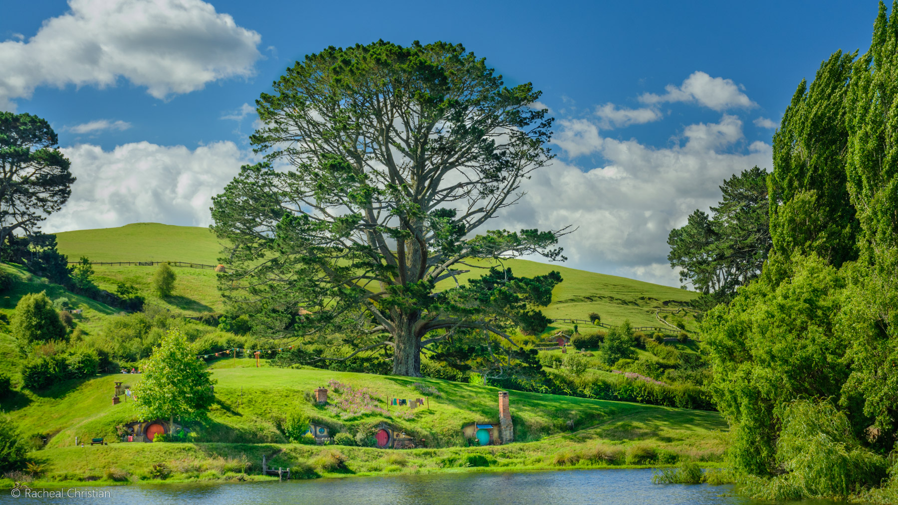 The Party Tree - Hobbiton by Racheal Christian -