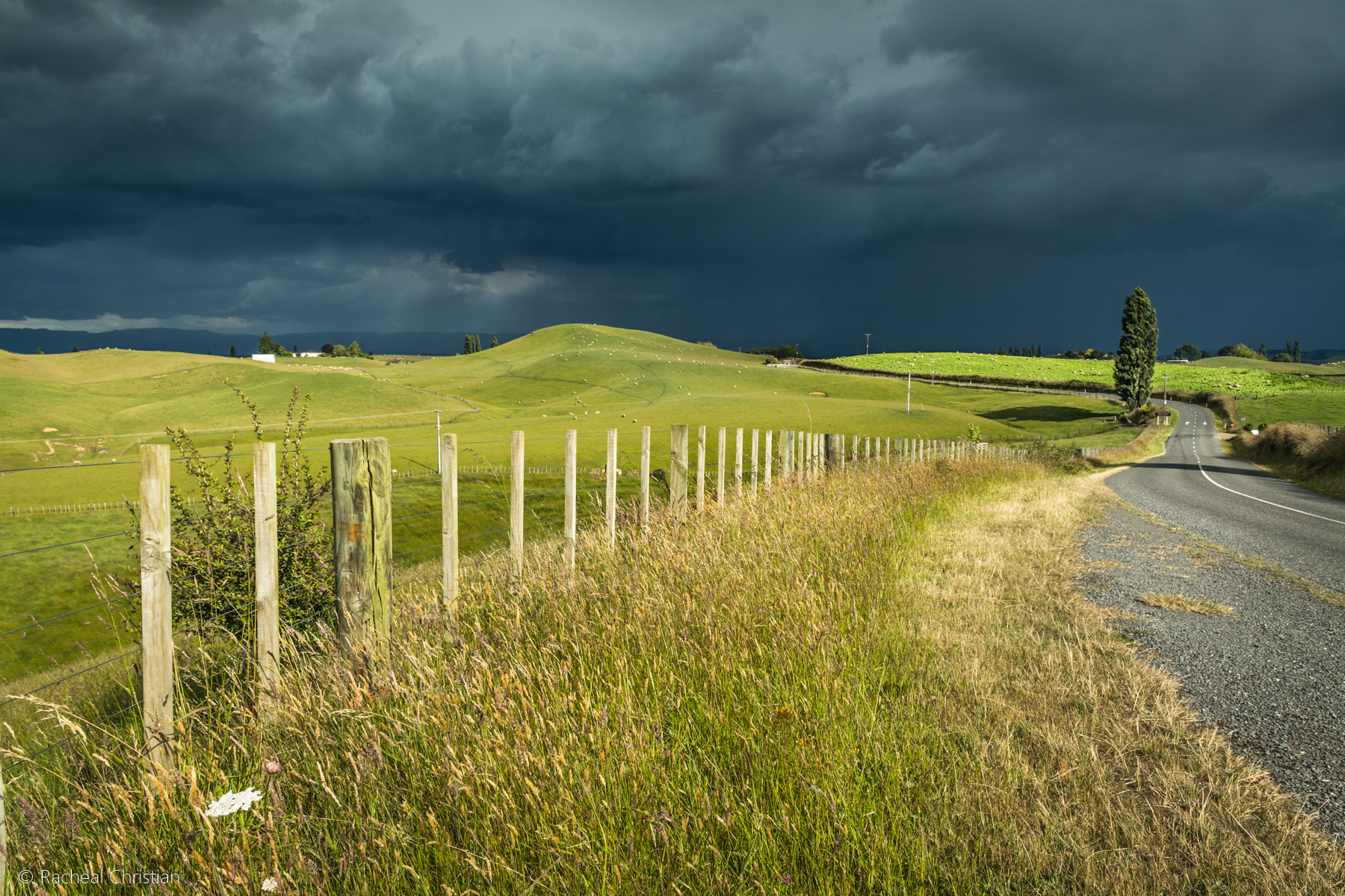 Photo Of The Week: Matamata Countryside | NZ