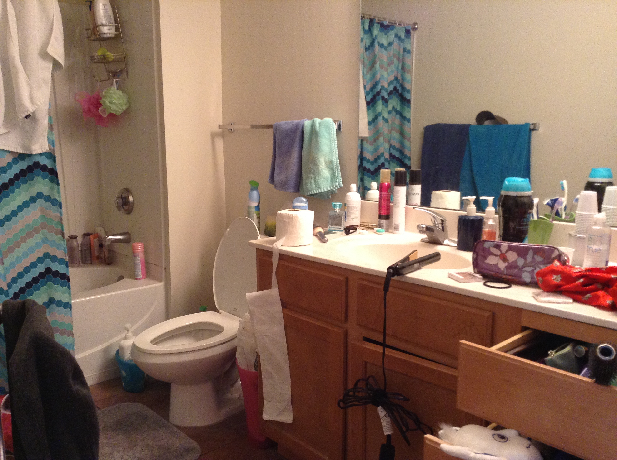 6 Places for Cleanliness Realizations in a College ... on Apartment Bathroom  id=60548
