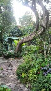 Sonya's Garden, Tagaytay