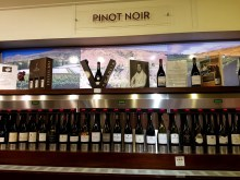 pinot-noir-at-the-winery