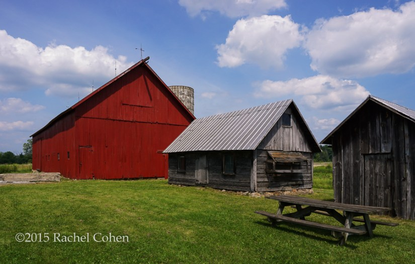 """""""Log Cabin and Barn"""" The original cabin that housed the owners of this land in the beginning. Now it is sandwiched between a large red barn and a smaller out building."""