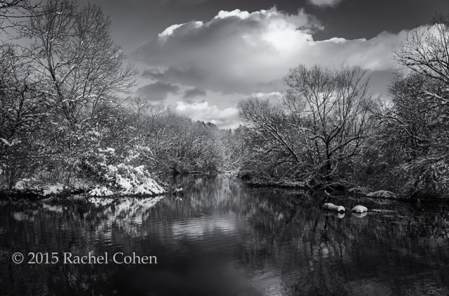"""""""Afternoon in Shades of Gray"""" This scene in late fall with a beautiful snow just begged for black and white processing!"""