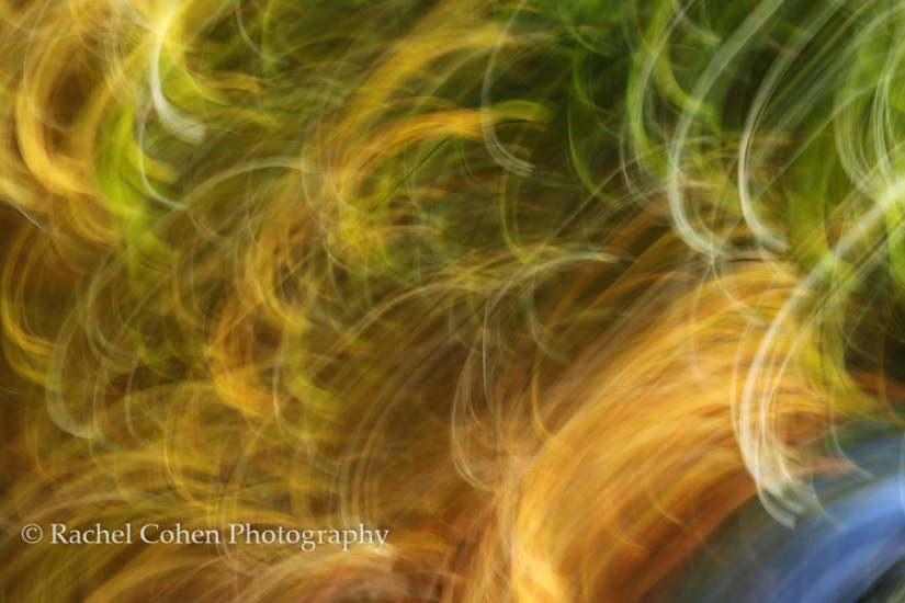 """Movin to the Groovin"" A gold and green magical light filled abstract!"