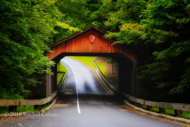 """Through the Covered Bridge"" The same beautiful covered bridge but with a bit of a magical air to it!"