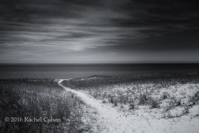 """Esch Beach Path Mono"" A beautiful black and white version of a scene at Esch Beach near empire Michigan!"