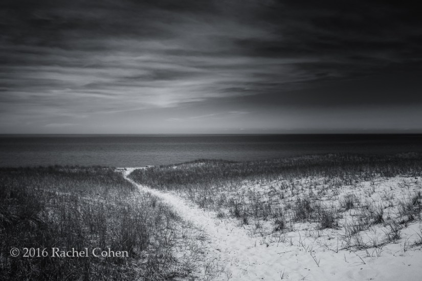 """Esch Beach Path Mono"" A beautiful black and white version of a scene at Esch Beach near empire Michigan!"