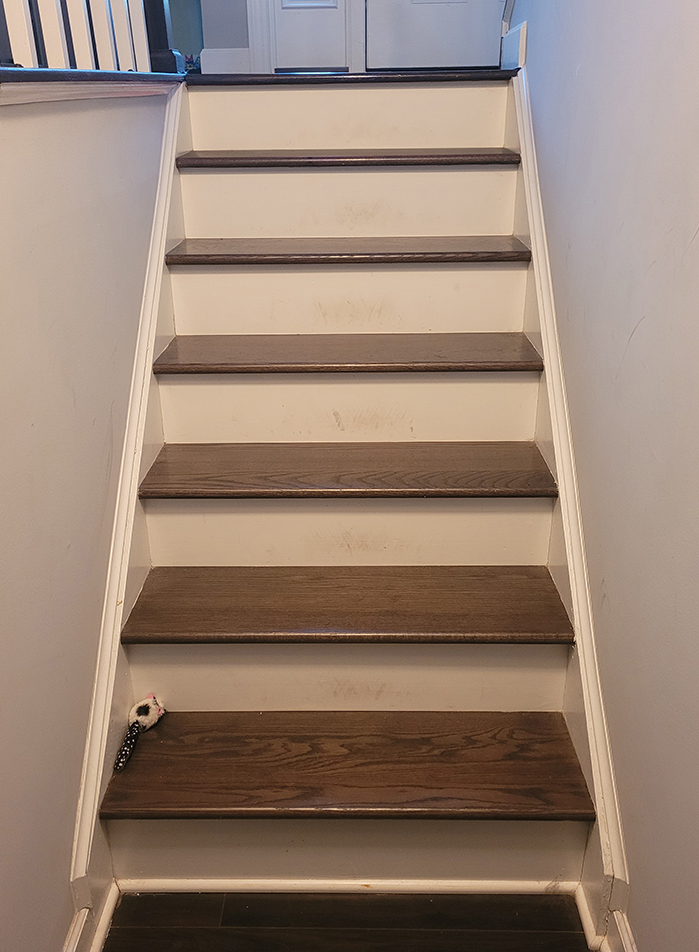 Lower stairs unpainted