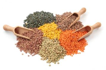 selection-of-lentil-types