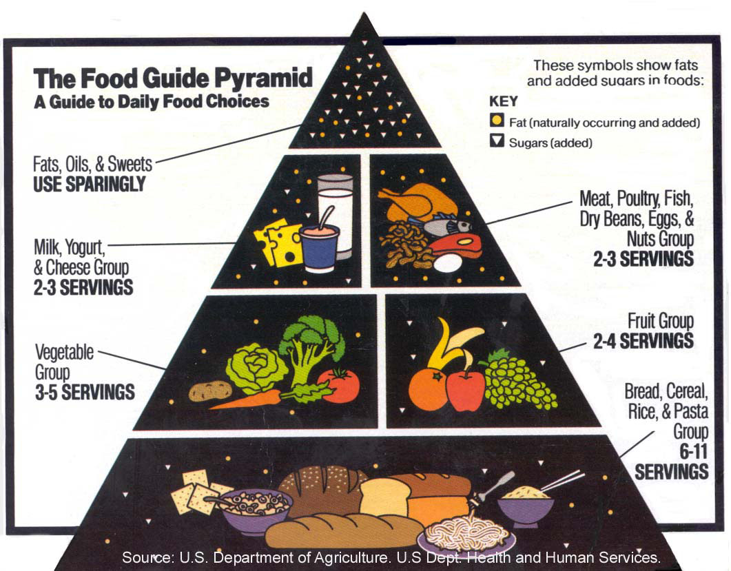 Food Pyramid Is Ancient History
