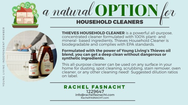 10-Thieves-Household-Cleaner