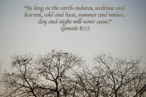 Bible-Quote