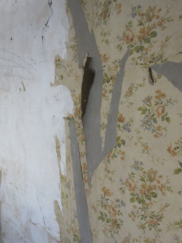 old, peeling wallpaper in Chateau Chaumont
