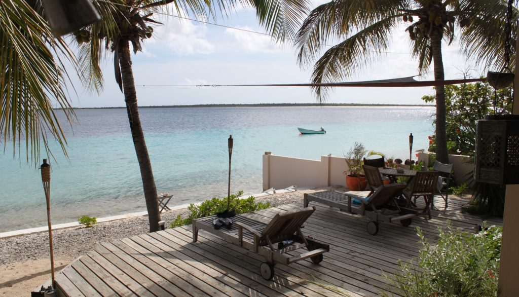 the patio behind the little house we rented when we visited Bonaire