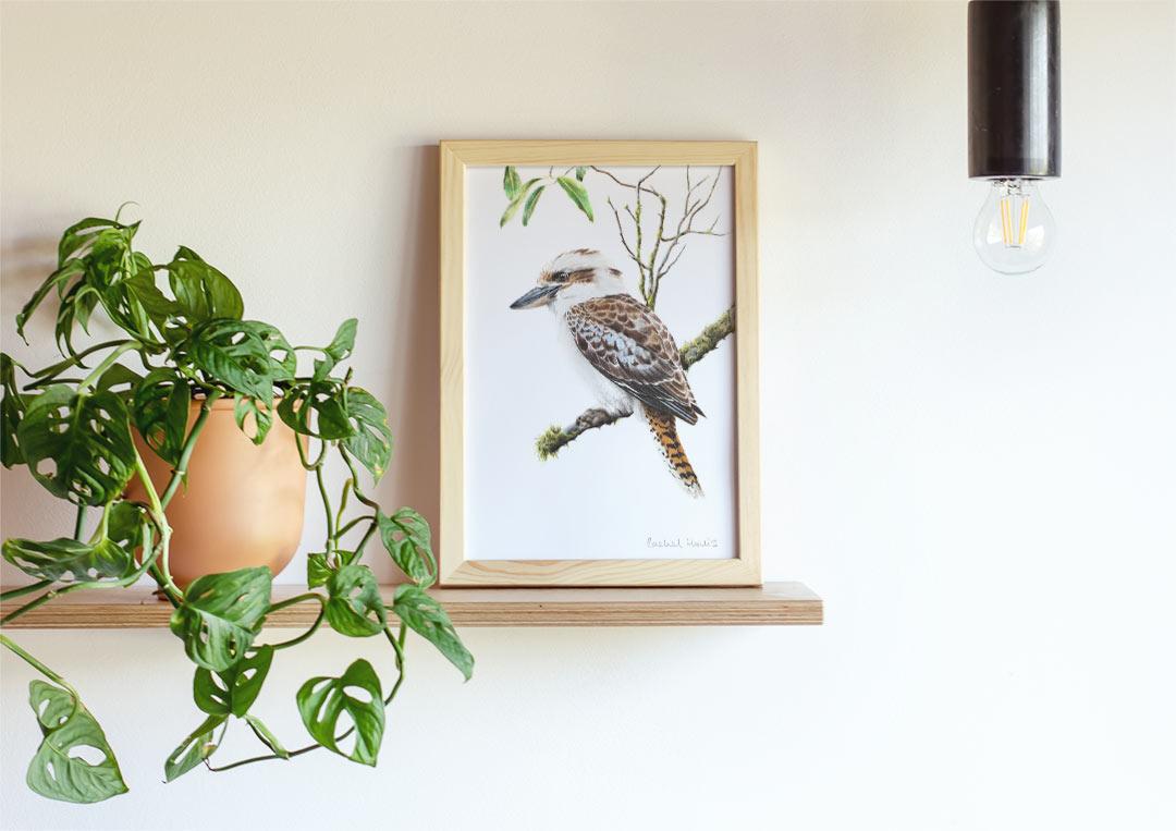 Laughing Kookaburra –  Example of Framed Fine Art Print