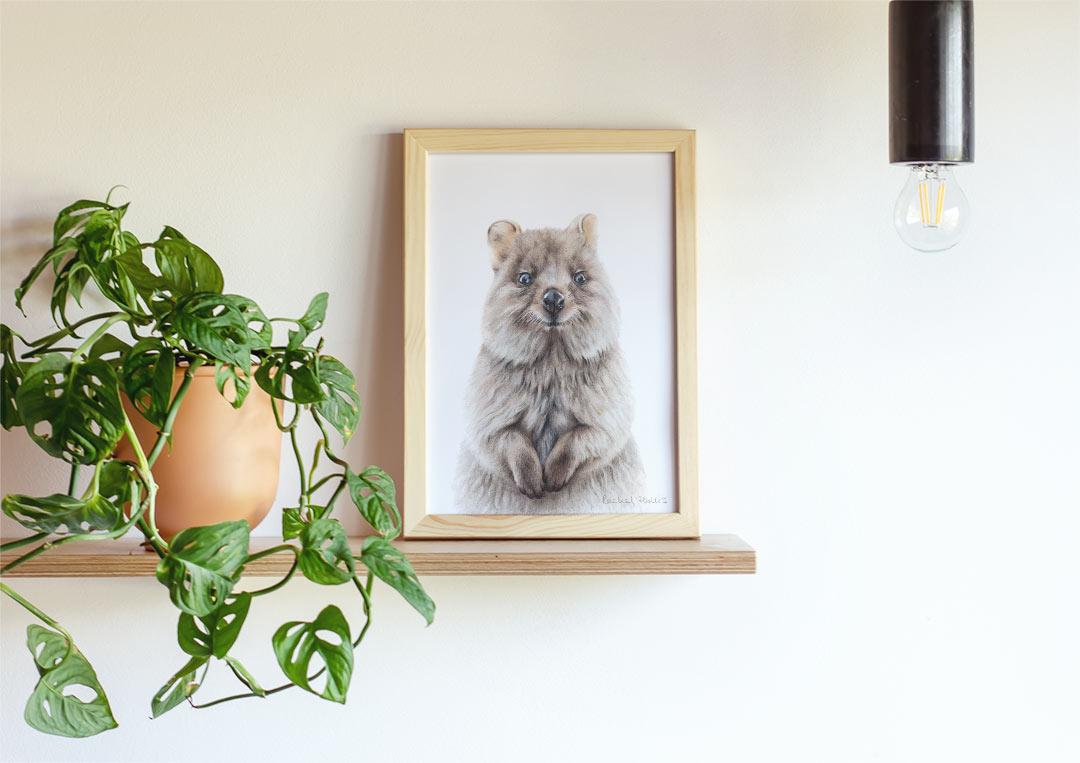 Quokka – Example of Framed Fine Art Print