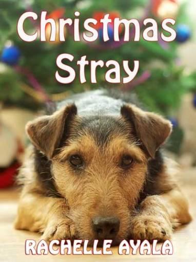14-Christmas-Stray