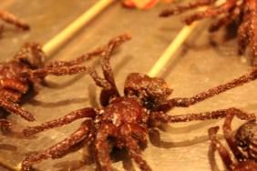 Fried spider on a stick! Wangfujing Street, Beijing