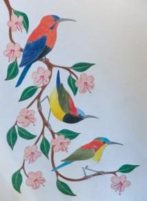 Magnificent sunbird (aka crimson), maroon-naped sunbird (aka flaming) and handsome sunbird.