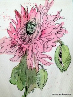 "Feathered Dahlia ink and watercolor wash. 3"" x 5"""