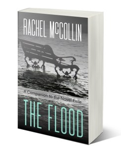 The Flood by Rachel McLean