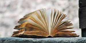 The 4 Elements of a Great Story