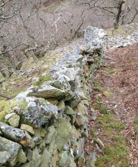 Nant y Coed wall