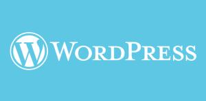 Premium WordPress Themes: Finding a Provider